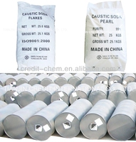 price of china caustic soda