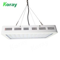 The Best LED Grow Light 300W Full Spectrum LED Grow Light for Orchids Cultivation