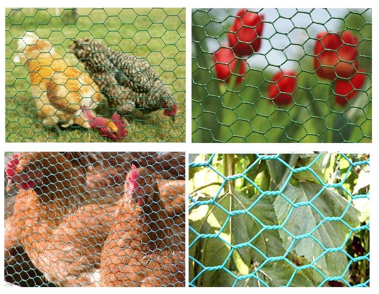 powder coated chicken wire rolls