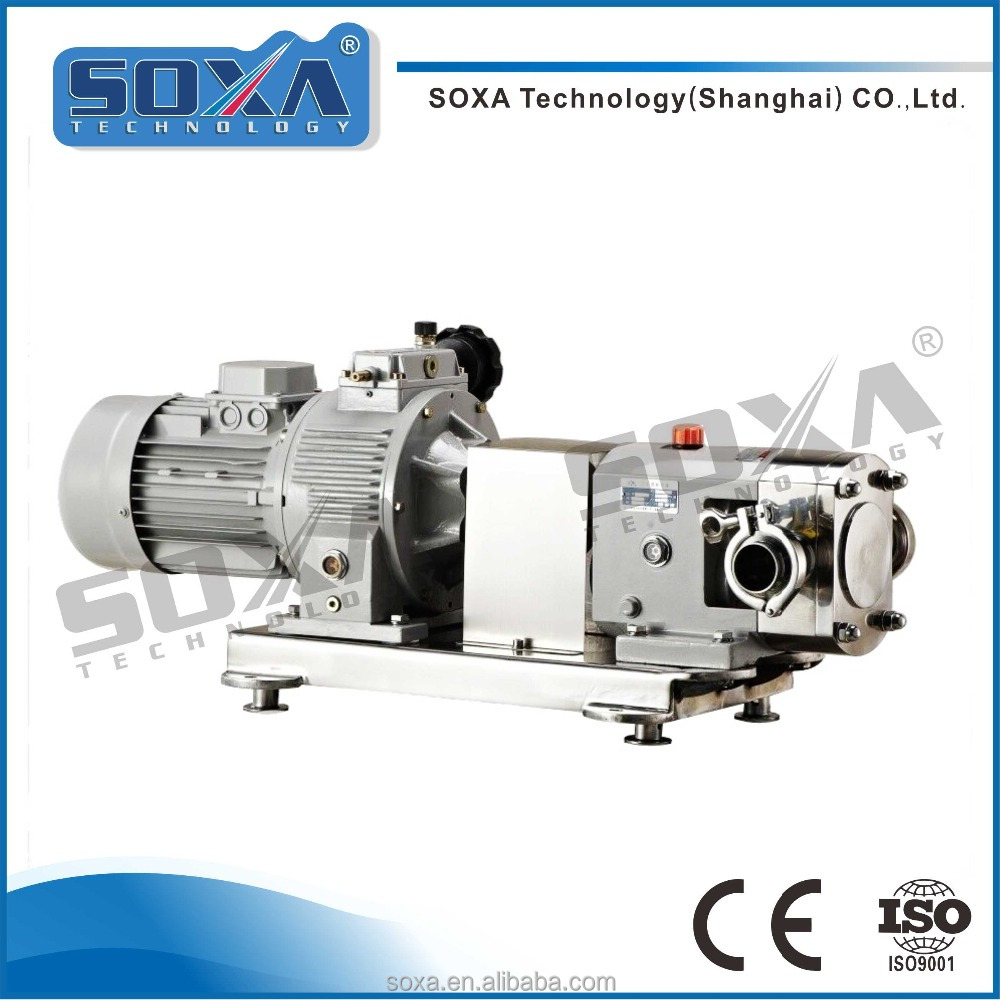 rotary lobe pump with frequency conversion motor