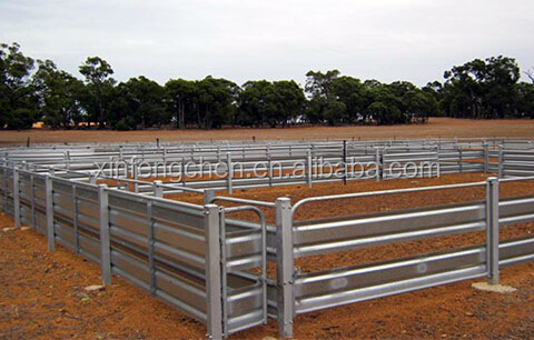 Cattle Yard Panels