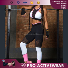 (Free sample)Embroidery Sexy Mesh Gym Clothes Great Stretch Sports Tights Wholesale Yoga Pants For Women