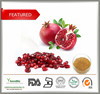 High quality pomegranate peel extract,Hot sale pomegranate peel extract,ellagic acid40%,90%,polyphenols 40%-60%