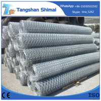 China manufacturer high quality galvanized hexagonal wire mesh size