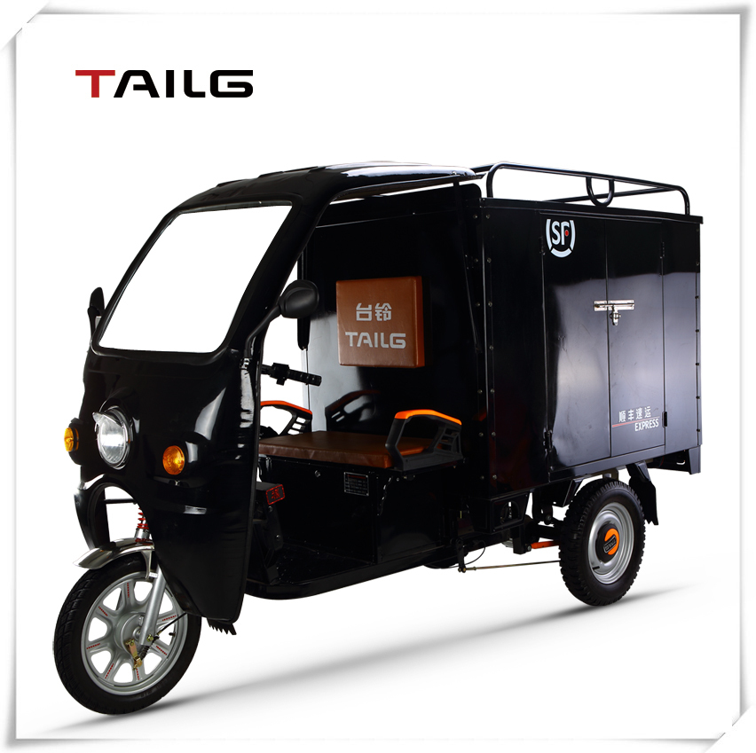 Electric tricycle adult close expressage Three wheel motorcycle for cargo