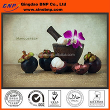 high quality Mangosteen P.E ,Mangosteen Extract make the Mangosteen P.E Capsule