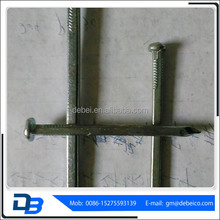 Stainless Steel Concrete Nail Hot Dipped Galvanized Square Boat Nails