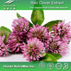 High Quality Factory supply! Red clover extract/ biochanin A/ Formononetin 99%