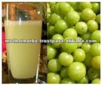 Indian herbs amla fruits juice