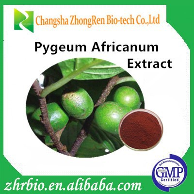 Free Samples Pygeum africanum extract helpful in prostate health