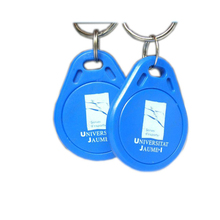 Printable RFID Access Control Key Tag, Manufacture ABS RFID Key Fob