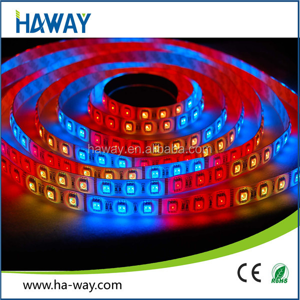Christmas Promotion Waterproof 5050 RGB LED Strip Kits With 12V 5A Power Adapter and 44 Key Controller