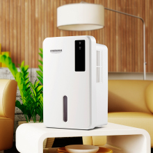 home duct dry air dehumidifier