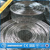 hot dip/ Electric Galvanized Welded Wire Mesh