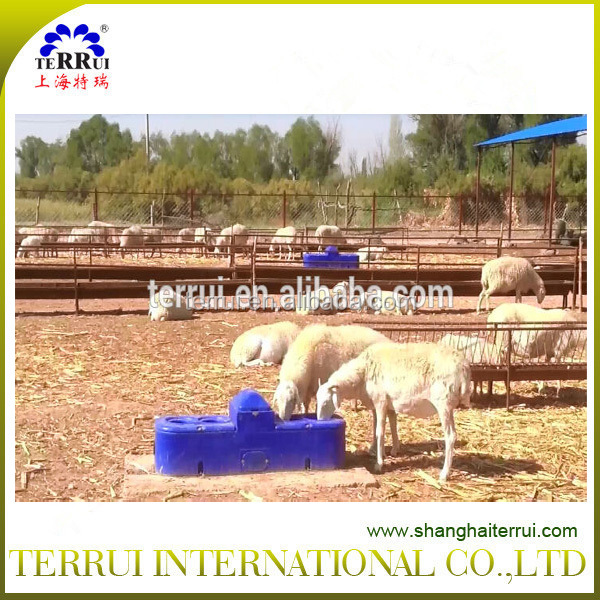 livestock equipment sheep drinking waterers -15years gold supplier