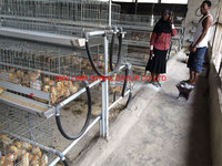 poultry galvanized cage for growing broiler from one day to 24 weeks old