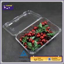 professional clear pet plastic box blister packaging