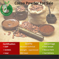 Cocoa Ingredients/Dutch Alkalized Cocoa Powder/Cocoa Powder For Sale