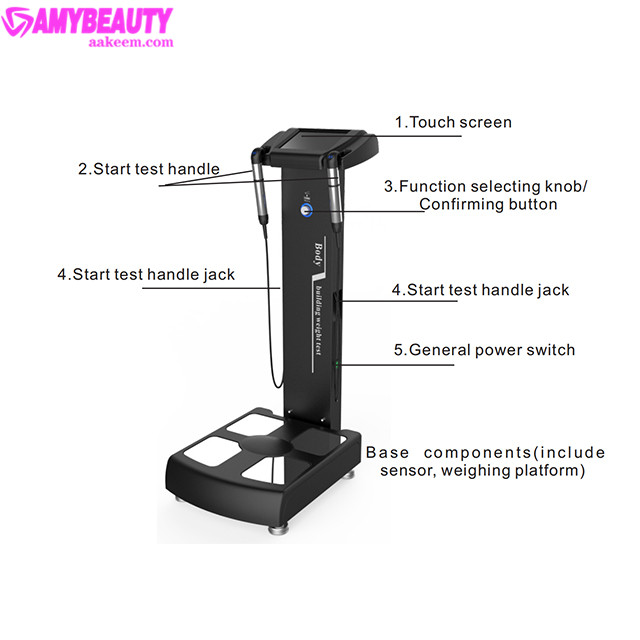 2019 HOT sale Professional body composition analysis machine with printer