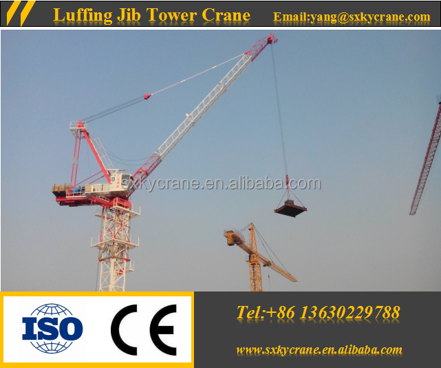 New Design Construction Machinery D5030 12t Luffing Jib Tower Cranes for Sale