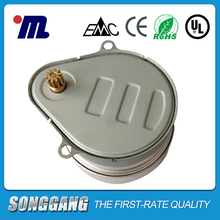 110V 5RPM AC Hysteresis Synchronous Motor for Valve