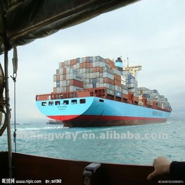 Sea Freight Service from Shenzhen to Ajman/Fujairah/Sharjah
