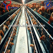 laboratory animal cage/ prices cages for laying hens