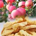 China supplier sale Dried Fuji Apple Slices