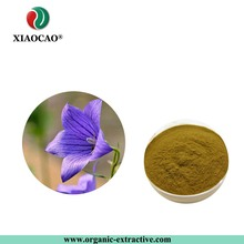 Supply Best Quality Balloon Flower Root Extract Powder/Pure Balloon Flower Root Powder