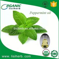 2017 china new product mint essential oil