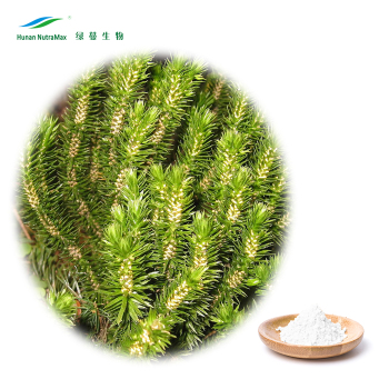 Factory Supply 100% Pure Natural Huperzia Serrata Extract Huperzine A Powder 1% by HPLC