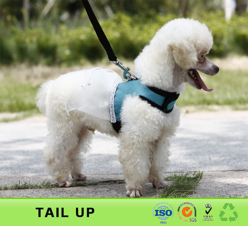 TAILUP Best selling cloth for dress pet shop dog cat
