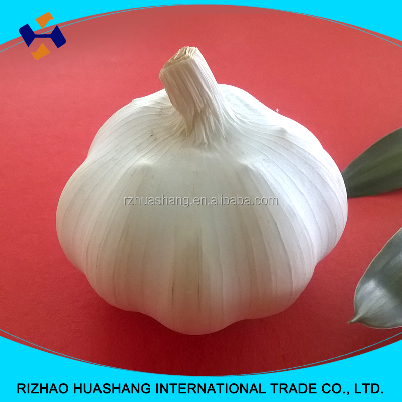 2016 china white garlic 4.0 price