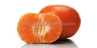 New Year 2015 Special Offer - Mandarin Easypeeler Kinnow Citrus fruit