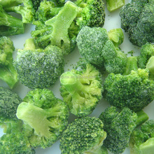top quality /healthy food frozen broccoli with best price