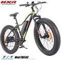ebike 48V new used electric bicycle 1000W fat tire snow beach electric bike