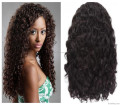 wholesale 100% unprocessed 6A brazilian virgin hair full lace wig glueless human hair wig