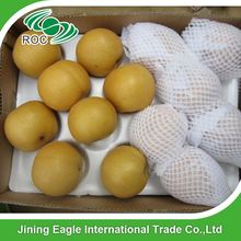 China fresh crispy sweet juicy fengshui pear