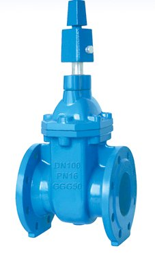 BS5163 soft-sealing & hard-sealing gate valve