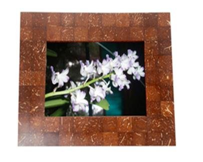 Coconut Frame (picture, painting, mirror, other...)