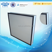 H14 Efficiency Mini-Pleat High Efficiency Air Filter,HEPA with Mesh