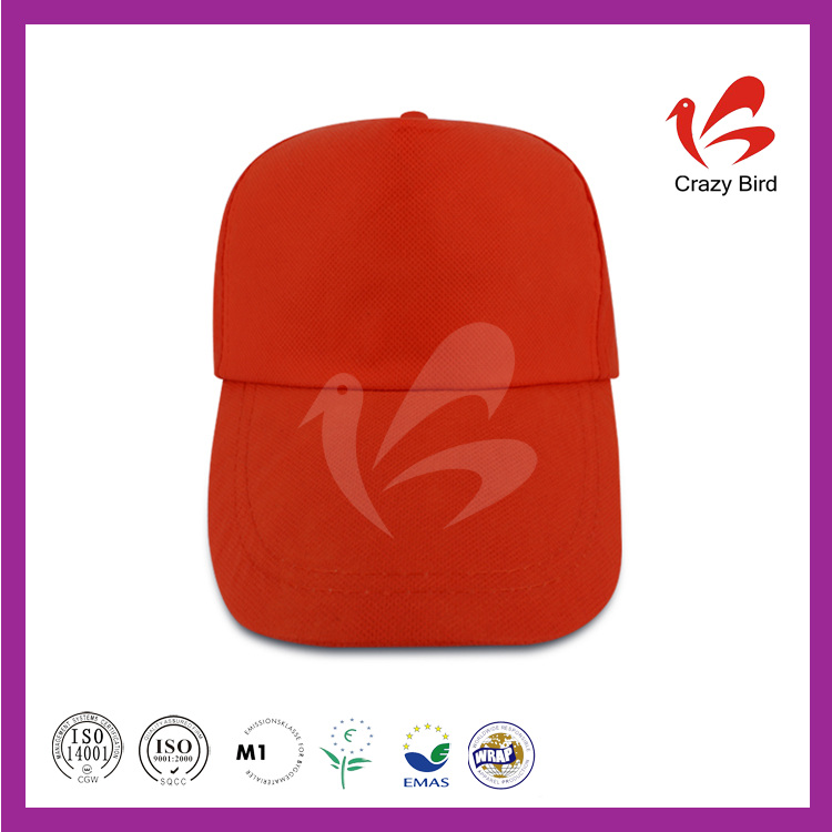 CrazyBird Manufacturer Wholesale Washed Cotton Plain Caps Malaysia
