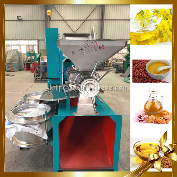 Promotion Professional press sunflower oil grapeseed oil castor oil processing equipment