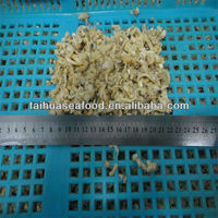 frozen king clam meat