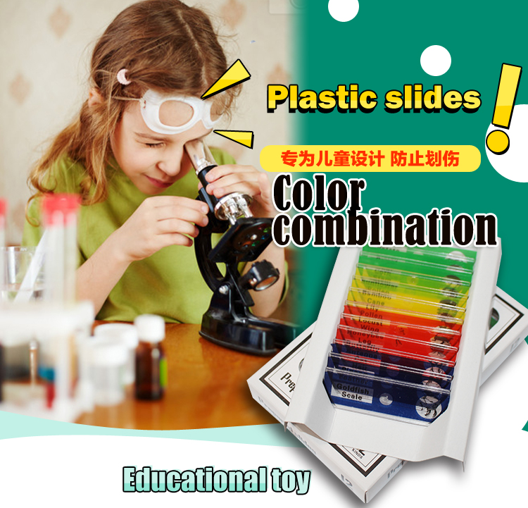 Fixed items most popular 12pieces botany children plastic biology prepared microscope slides