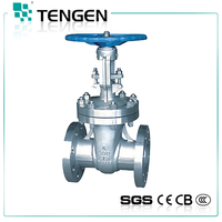 Sea water stainless steel Gate Valve