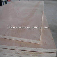 China commercial plywood board