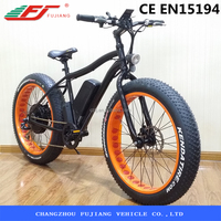 Hot sell cheap electric bike electric fat bike CE EN15194 (FJTDE07)