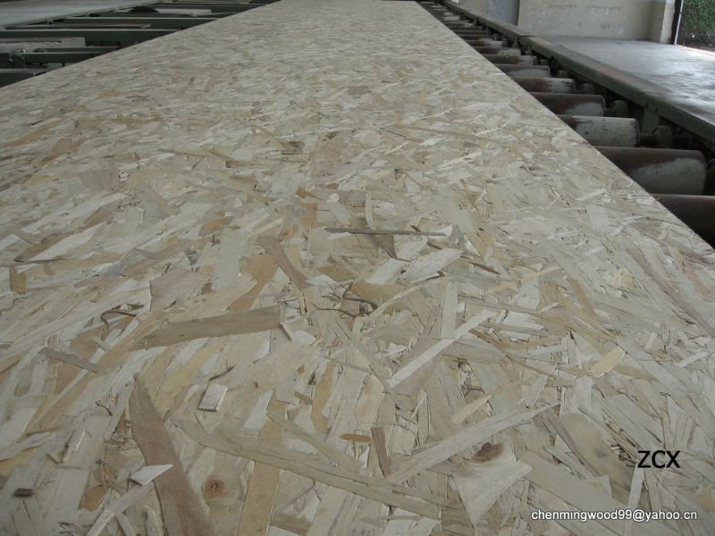 high quality 12mm OSB for house building