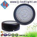 Premium 49*3W Full Spectrum Mini UFO LED Grow Light for Aeroponic system, Hydroponic System